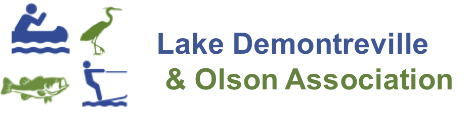 Lake Demontreville and Olson Association